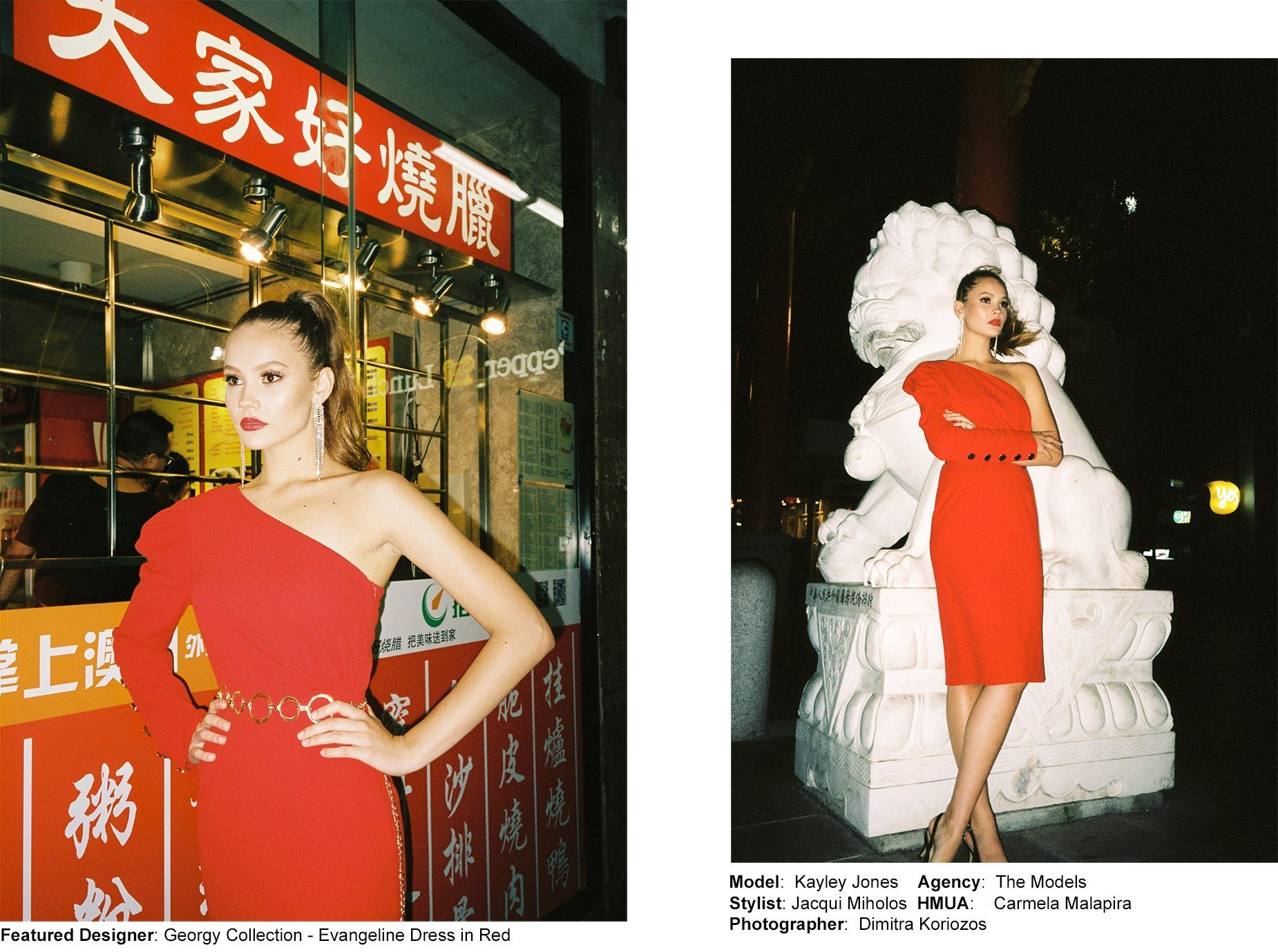 Year of the pig - Chinese New Year editorial