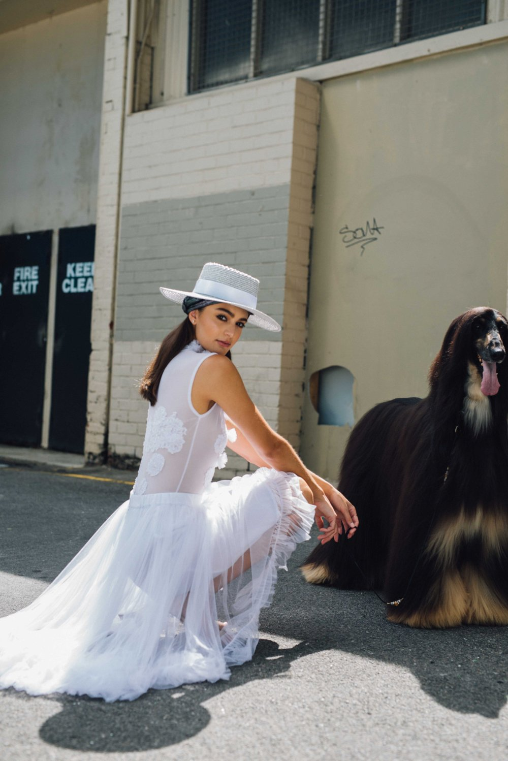 Jonte Designs, Year of the Dog Shoot with Afghan Hounds
