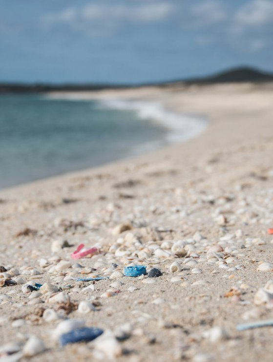 Plastic to be collected in the beach clean up